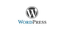 We Are Wordpress Developers Company